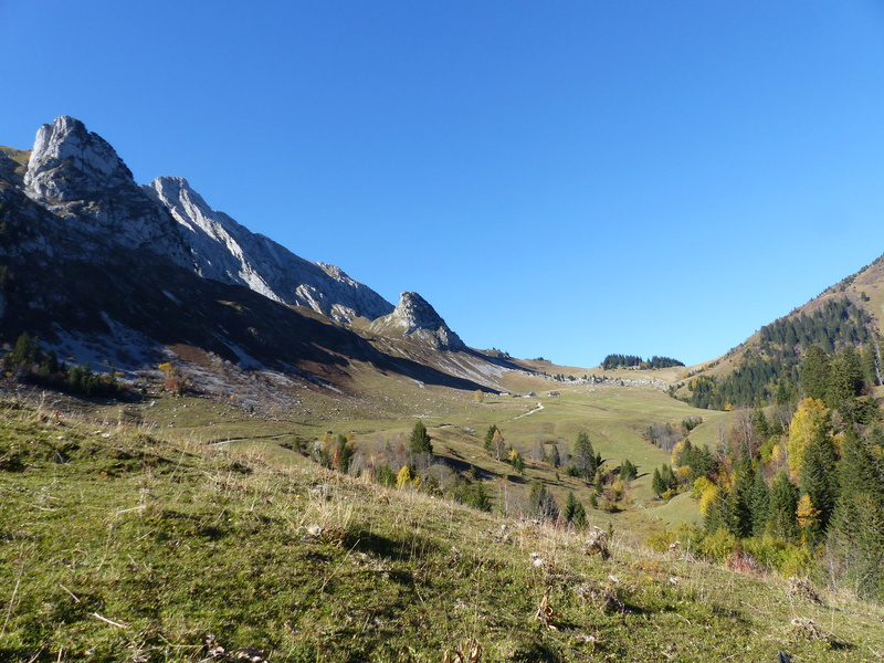 Fin d'automne dans les Bauges P1040112