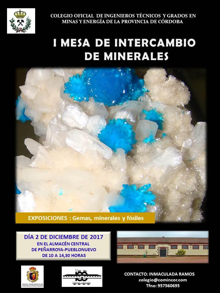 I Mesa de Intercambio de minerales en Peñarroya-Pueblonuevo (Córdoba) Presen10