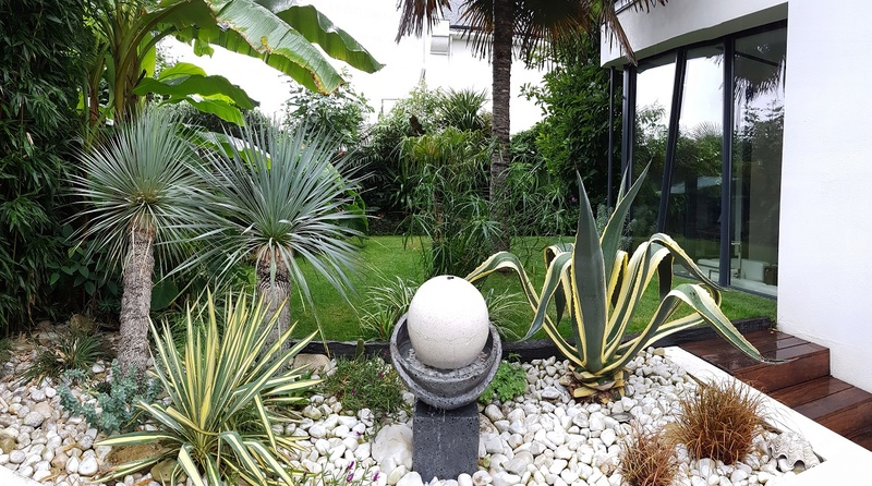 Mon (tout) petit jardin en mode tropical 20170710