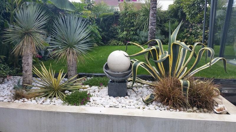 Mon (tout) petit jardin en mode tropical - Page 3 Apres_12