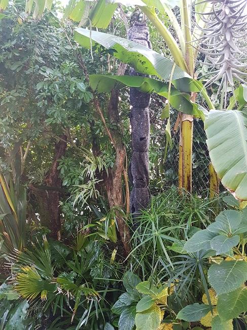Support à épiphytes et broméliacées rustiques Aprys_12