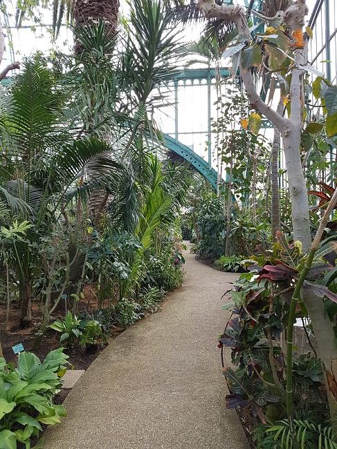 (75) Jardin des serres d'Auteuil - Paris Auteui11