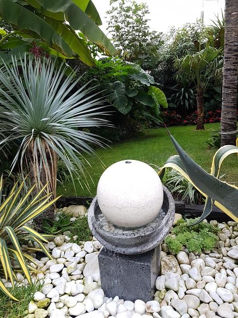 Rémi - Mon (tout) petit jardin en mode tropical - Page 2 J_1810