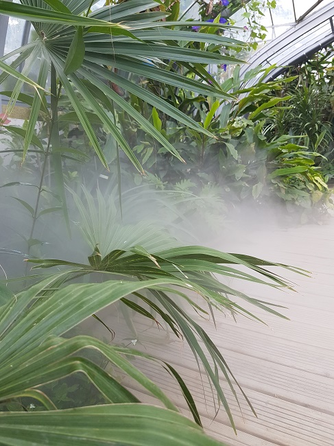 (44) Jardin des plantes - Nantes Jardin36