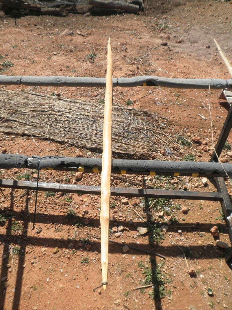 Tutorial arco de vara de almez/arco para Zorro - Página 3 P3170323