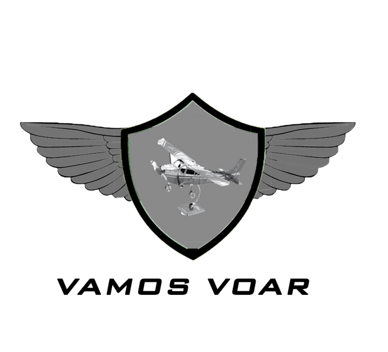 BIRD STRIKE NO FSX Novo_l10