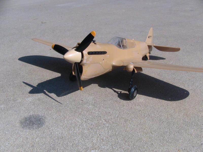 Cox P-40 and Testors P-40 Img_0230