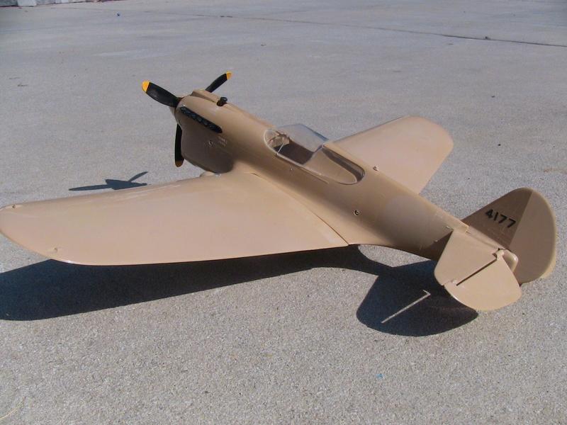 Cox P-40 and Testors P-40 Img_0231