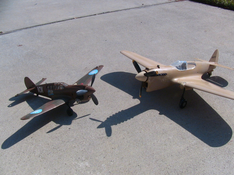 Cox P-40 and Testors P-40 Img_0232