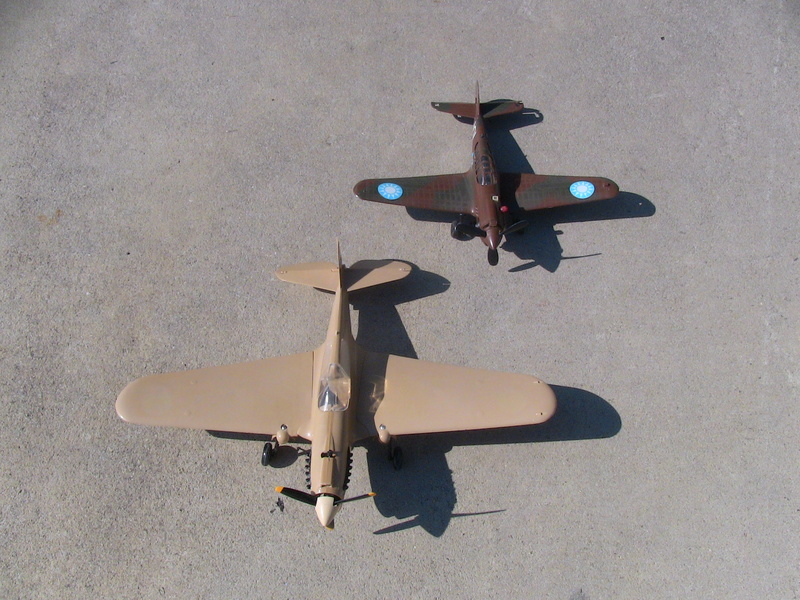 Cox P-40 and Testors P-40 Img_0234
