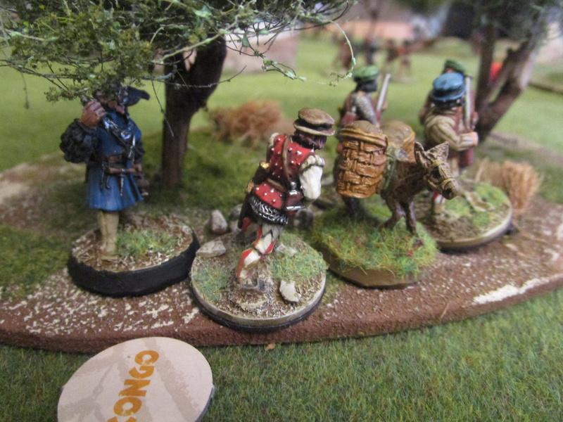 """Première campagne """"trône du tonnerre"""" en pays aztéque - premier contact Img_9347"""