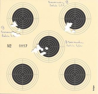Brocock Compatto target 4,5mm 16J Compat19