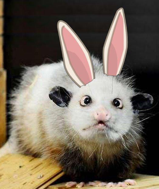 Happy Easter Failp10