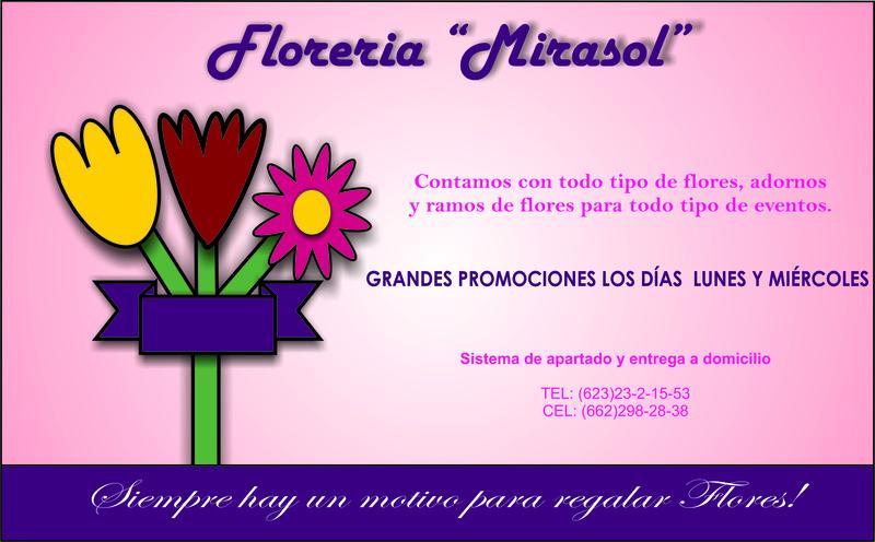 "Floreria ""Mirasol"" Florer10"