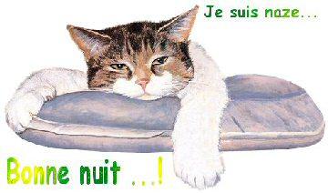 bonzour bonne zournée et bonne nuit notre ti nid za nous - Page 38 Chat-n10