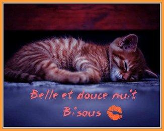 bonzour bonne zournée et bonne nuit notre ti nid za nous - Page 5 Ob_1c610