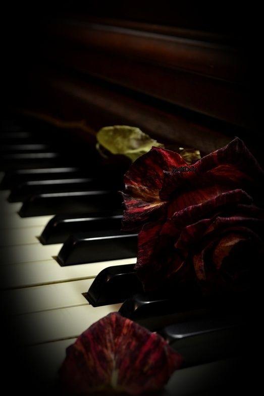 Piano, piano... Piano310