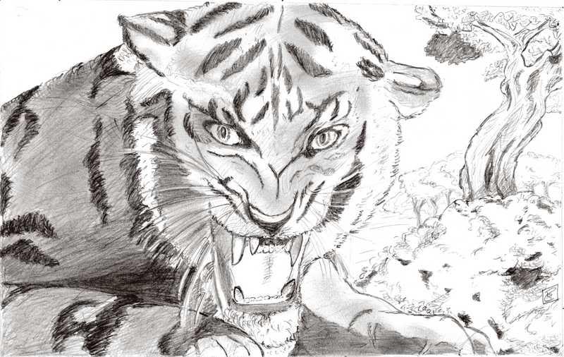 Rabiscos/esboços/desenhos (ou apenas as tentativas) Tigre10