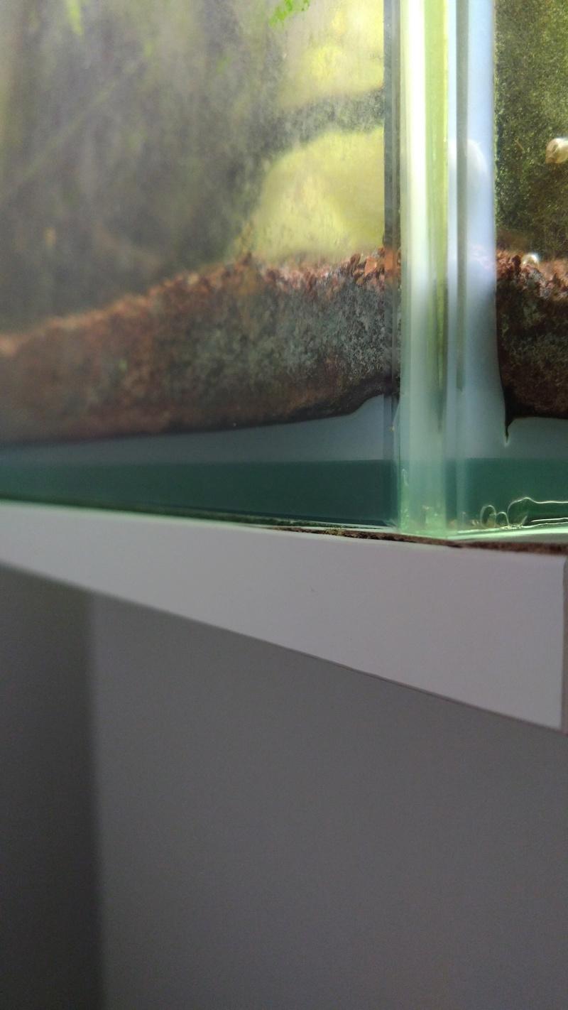 Meuble D Aquarium Avec Gonflement Dans L Angle