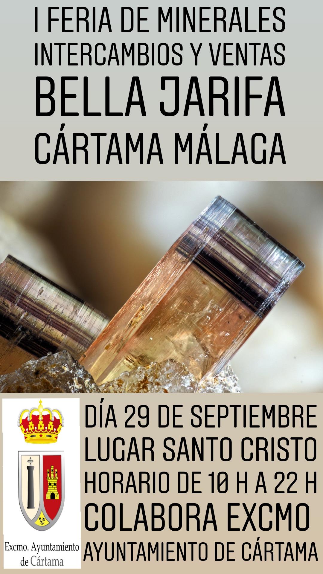 I Feria de minerales intercambio y venta de Cártama (MÁLAGA) 20180520