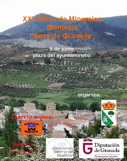 XXV FERIA MONTELUZ Beas de Granada 9 Junio 2018 Fb_im142