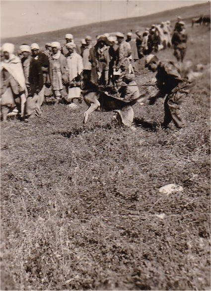 Souk Ahras & Tebessa 03 1959_z17