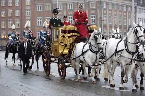 В Лондоне во время парада рухнула лошадь из кареты 15149010