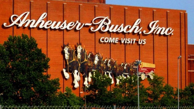 Внимание!! Открыта вакансия от Anheuser-Busch, где выращивают и тренируют знаменитых клайдов Будвайзерагде  Mw-fm311