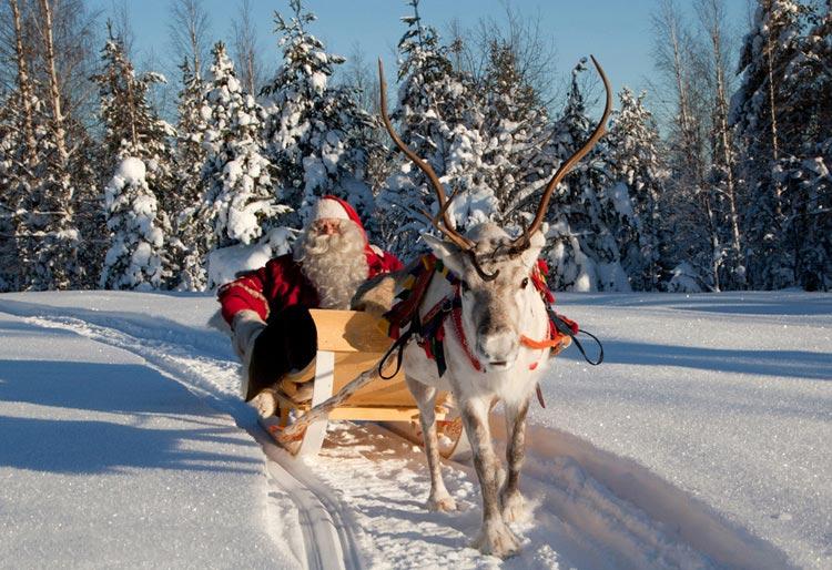 Хаски, олени и лошади будут катать посетителей восьми парков Москвы Santa110