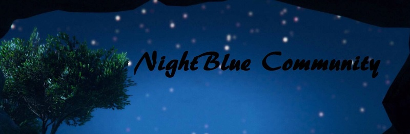 NigthBlue Community