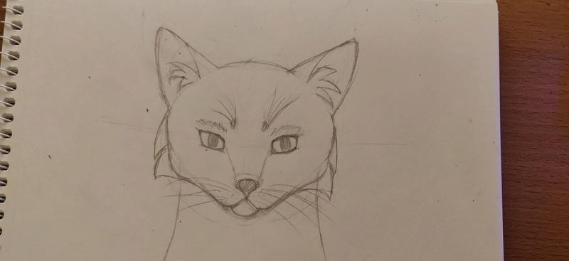 Py versucht dann auch mal zu zeichnen Img_2010