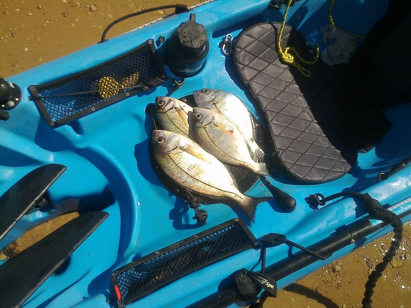 Vendo um Hobie Kayak Revolution 11 Fotogr11
