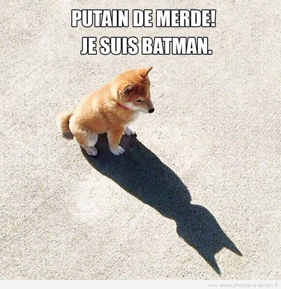 ça commence bien..... Batman10