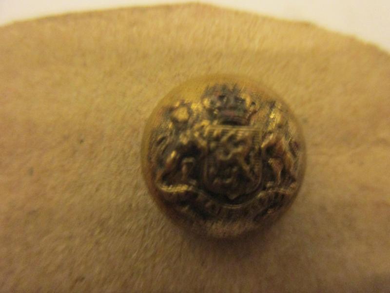 Petit bouton dorè Img_5632