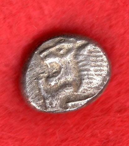 Hemiekton de Mileto. Jonia. S VI a.C. Mm_02511