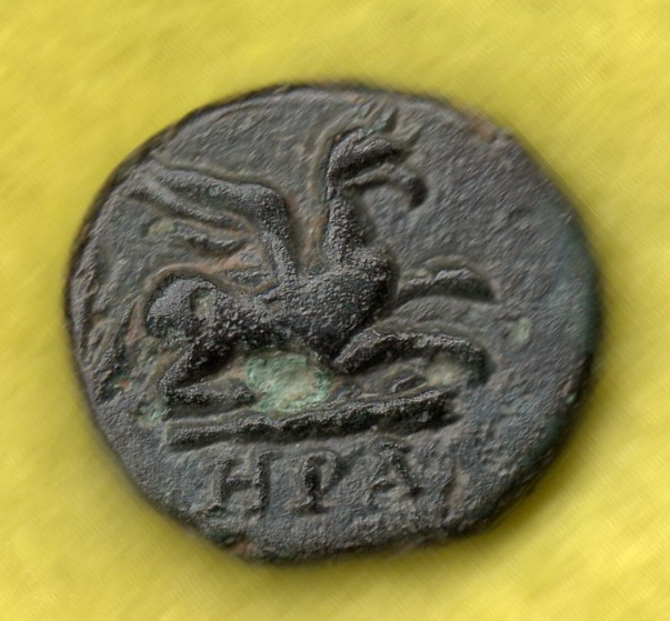 AE 16 de Abdera, Tracia Rob_4011