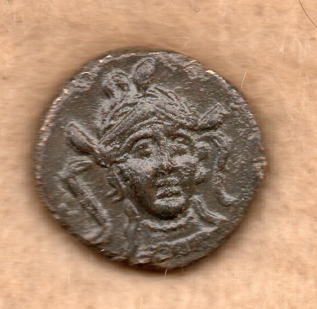 AE 15 de Metaponte, Lucania Rob_5911