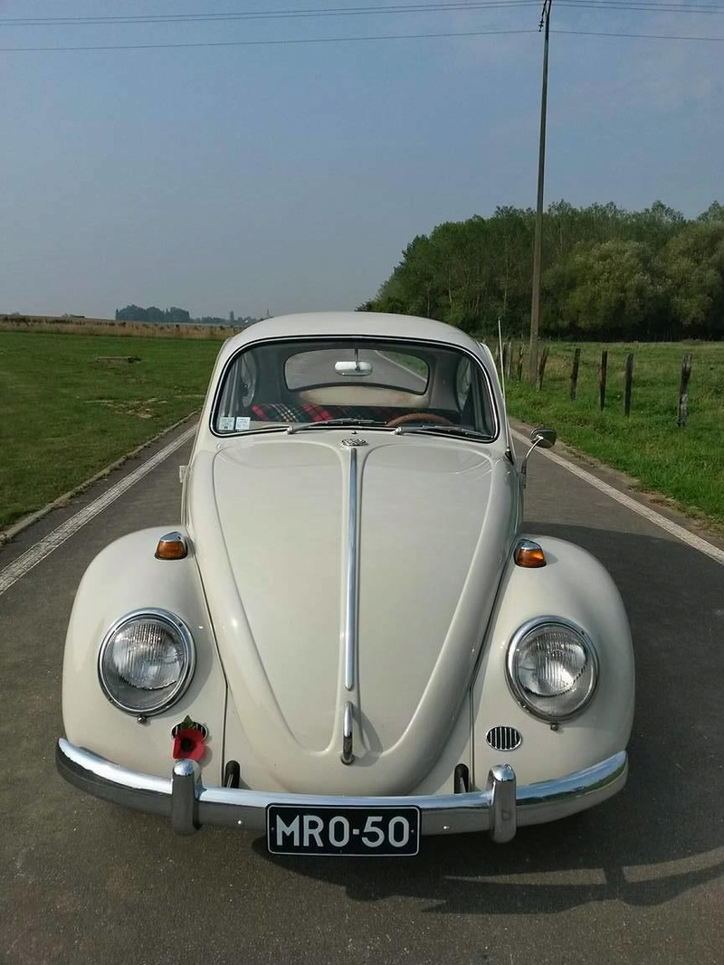 1965 Pearl White L87 21147011