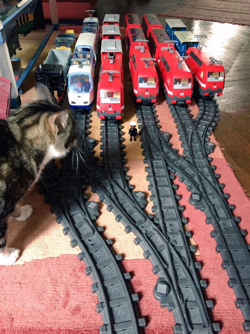 Playmobil / LGB les trains de jardin Image411