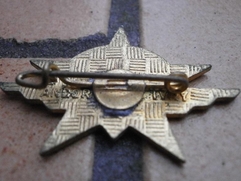 estimation de 6 insignes 1RCP divers fabricant Insign39