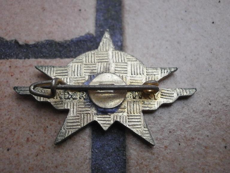 estimation de 6 insignes 1RCP divers fabricant Insign41