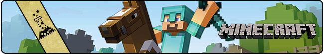 Minecraft Minecr10