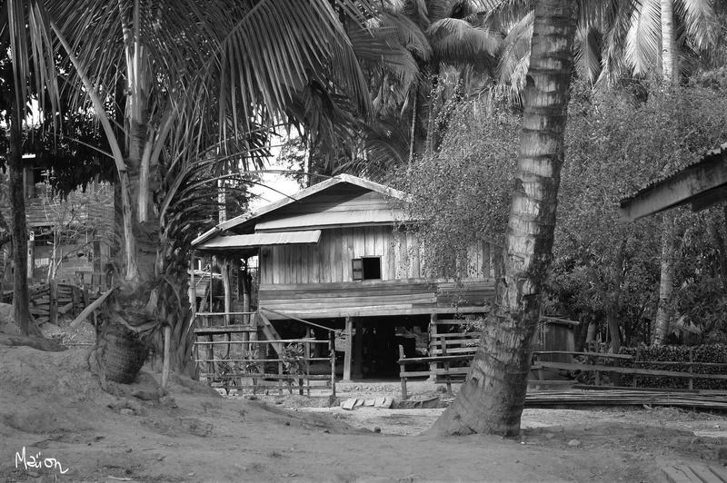 [FIL OUVERT] le bois sous toutes ses formes - Page 6 Laos_210