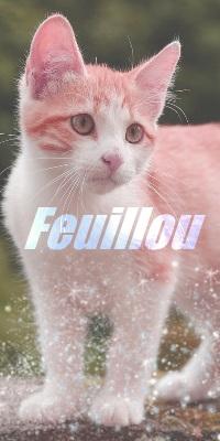 ♥ Atelier de Feuillou ♥ Ehdtht10