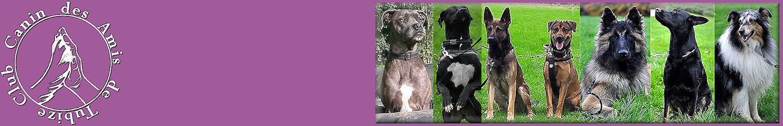 Club Canin des Amis de Tubize