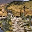 Le chemin de pierre