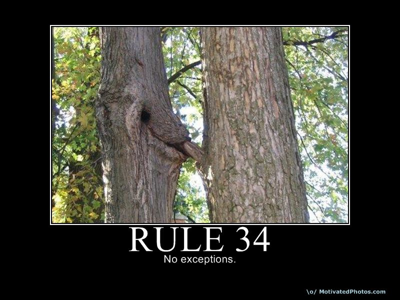 Rule 34 (If it exists, there is porn of it) Rule-311