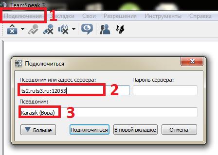 TeamSpeak + Настройка 110