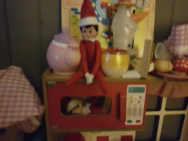 Elf on a shelf anybody?  - Page 3 20171226