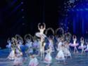 Концерты, спектакли, выставки
